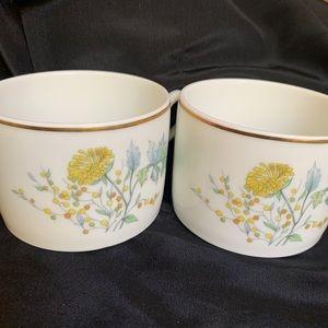 2 Richard Ginori PRIMAVERA Porcelain Flat Cups